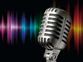 BDBR-microphone-vintage