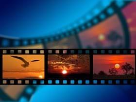 BDBR-video-paysages